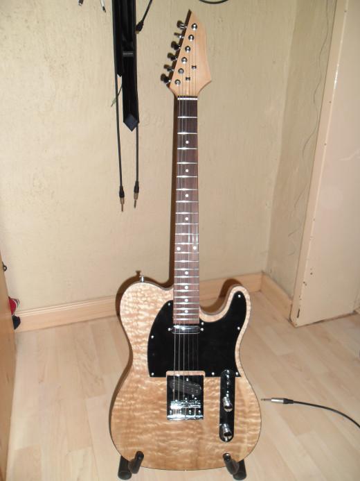 Andrew's EG TEL 10 DIY Guitar Kit