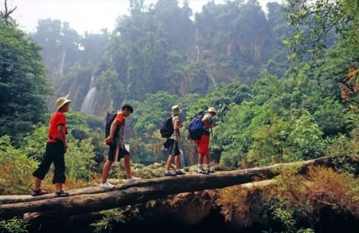 Tourists Hiking in Chiang Rai