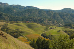 California wine country: Places in Napa and Sonoma that blew my mind.