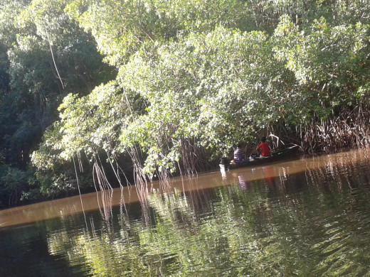 Men setting trap for crabs in the boat
