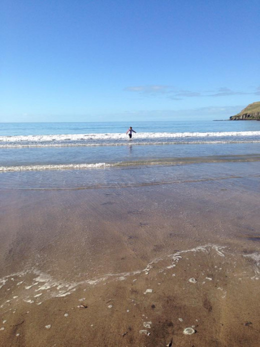 """Gorgeous beach area with a nice hiking area to """"go tramping"""" - Kiwi word for hiking."""