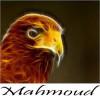 mahmoud el said profile image