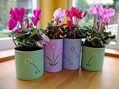 Old Tin Cans for Planting Flowers