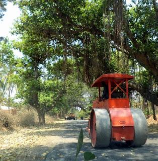 Near Devarayanadurga - Banyan-Shrouded Roads