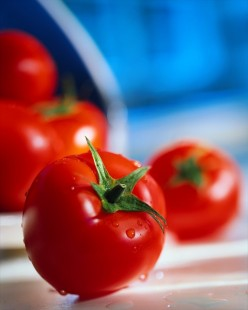 How to Cook Canned Tomatoes - Preparing Fresh Peeled Tomatoes for Sauces, Soups, and Salads