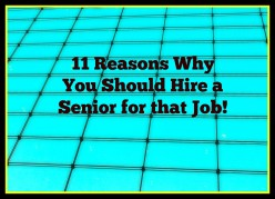 11 Reasons Why You Should Hire a Senior for That Job!