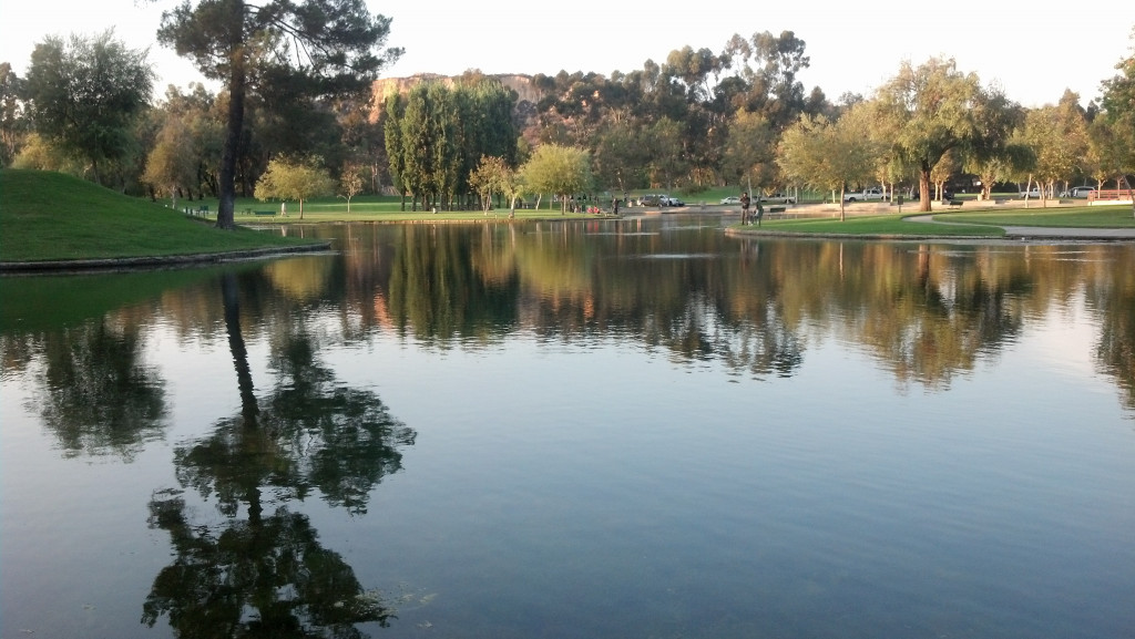 Orange County Fishing At Ralph Clark Park In Buena Park