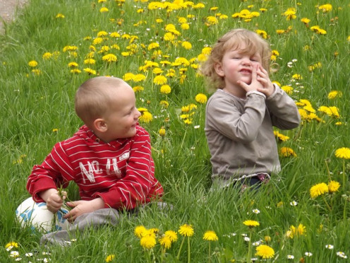 Children playing in a field of dandelions