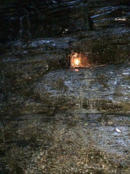 Picture taken at the Eternal Flame trail in Orchard, Park, NY April 24, 2014