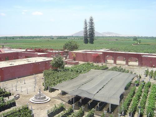 Fundo Tacama Wine and Pisco Makers Peru
