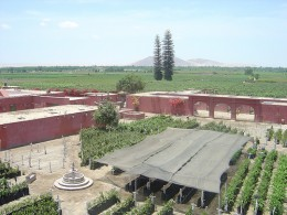 Fundo Tacama Wine and Pisco Makers Peru