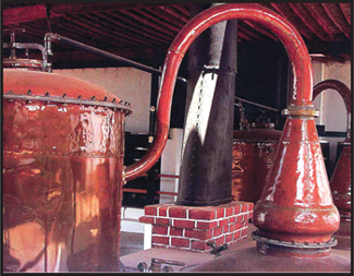 Peruvian Pot Still