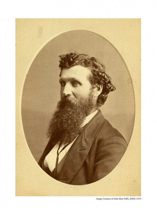 Portrait of John Muir, donning his signature beard.