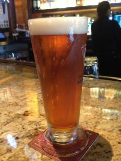 Beer Tasting: BJ's HopStorm IPA