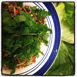 How to make Sung Choi Bao - healthy, easy and delicious!