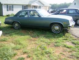 Here is a picture of a 1976 Pontiac Ventura. It is exactly the same color and trim package as my dad's car.