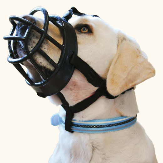 A very secure basket muzzle with a lot of air flow. Notice how the muzzle is fitted so that it will not rub on the dog's sensitive nose or bend its whiskers.