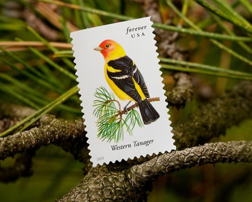Western Tanager stamp of the United States Postal Service Songbird series