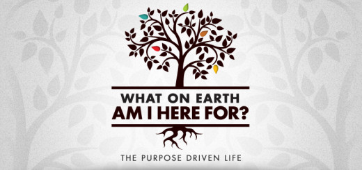 The Purpose-Driven Life is a manifesto for Christian living in the 21st century...a lifestyle based on eternal purposes, not cultural values. Using biblical stories and letting the Bible speak for itself, Warren clearly explains God's five purposes f
