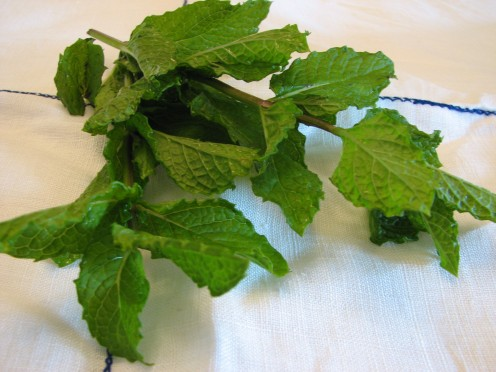 Fresh mint can be grown in the garden or indoors in pots.