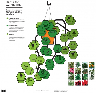 Plants for Your Health, from GOOD Magazine