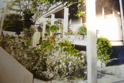 Minnie's Garden