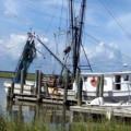 Why I Love Shrimp Boats