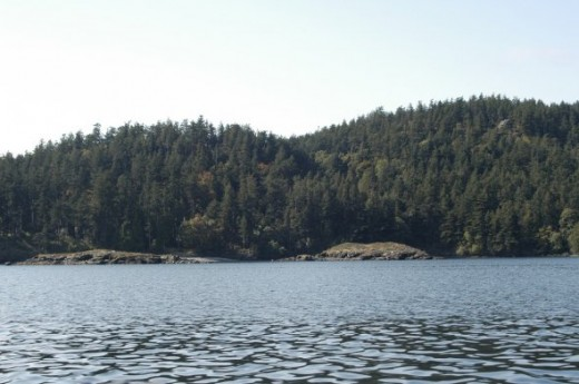 Possession Sound portion of Puget Sound