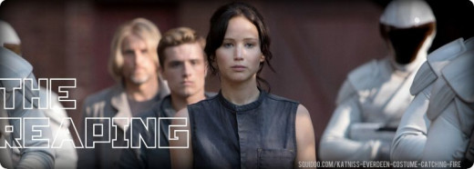 Katniss Catching Fire Reaping Costume