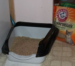 High-sided kitty-litter pan