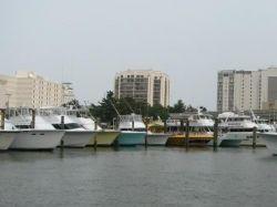virginia beach fishing charter boats