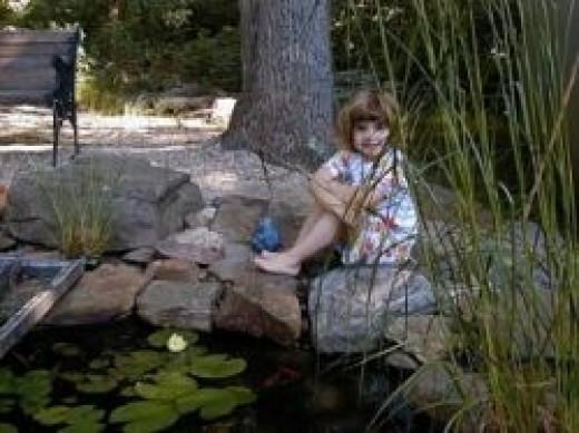 Building A Small Backyard Pond Around Rocks And Under