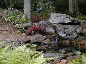 A Small Backyard Pond provides a year-round water source for birds and other wildlife