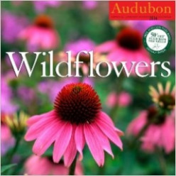 Wall Calendars and More by Audubon