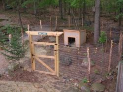 Our new Goat Pen