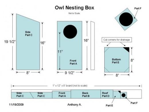 Screech Owl House Plans How To Build A Screech Owl Box