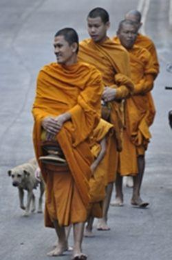 School of Buddism