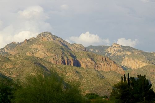Another view from the Catalina Foothills. The spiky trees barely visible to the right above the green bush are Italian Cypress. They are not native, but are widely planted.