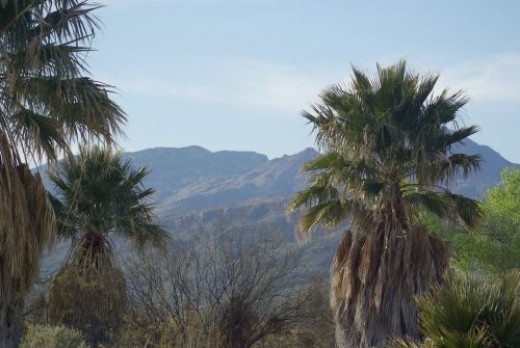 "Another view from Agua Caliente. ""Caliente"" means ""hot"" in Spanish."
