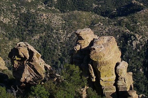 Rock hoodoos typical of this elevation.