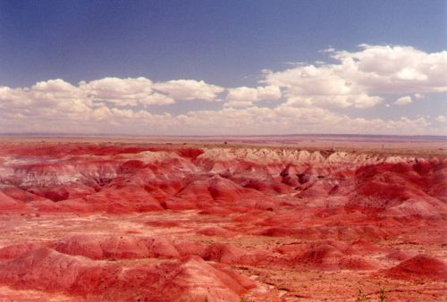 The hills are rich in iron oxide. That is what makes the red color. In other words, the hills are rusty!
