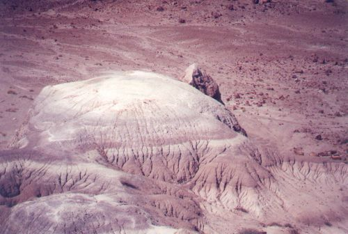 Areas like the Painted Desert are basically badlands. Nothing much grows; the land is barren and eroded.