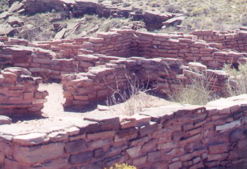 Ruins near the Petrified Forest