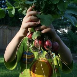 Our School Garden: Gardening With Blind Children