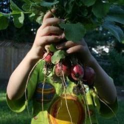 Our School Garden: Gardening With Blind Children