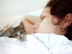 My Sleep Apnea Test