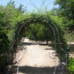 Entrance to the healing garden.