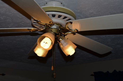 Here is a picture of the ugly CFL bulbs in our Casablanca style ceiling fan.