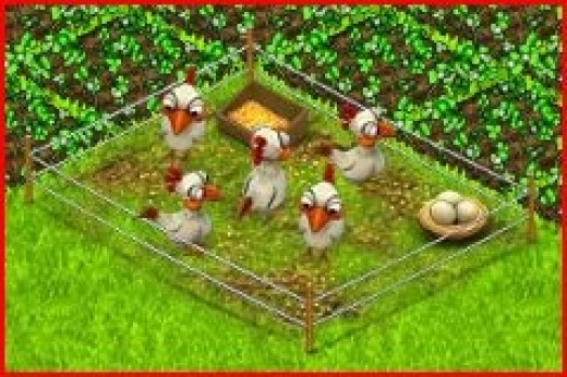 Country Life Chicken Coop Gear