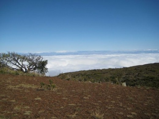 No campfires are allowed on Haleakala, the climate is very dry.